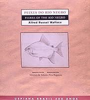 Peixes Do Rio Negro