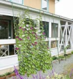 DAIM 緑のカーテン 伸縮立掛け180cm幅 高さ160〜300cm