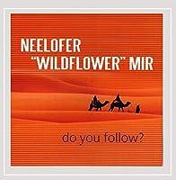 Do You Follow ?