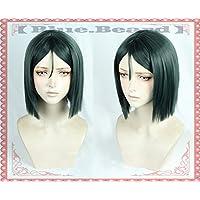 耐熱コスプレウィッグ ロード・エルメロイII世 ウェイバー Fate/Grand Order Fate/GO FGO コスチュム 諸葛孔明 cos wig フェイト・グランドオーダー+おまけ