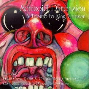 Schizoid Dimension