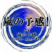 嵐の予感! (feat. 鏡音レン)