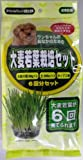 アラタ わんちゃん大麦若葉栽培セット