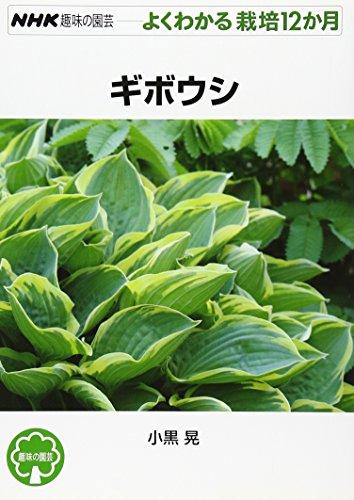 ギボウシ (NHK趣味の園芸 よくわかる栽培12か月)の詳細を見る