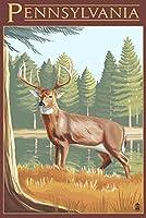 PennsylvaniaホワイトTailed Deer 9 x 12 Art Print LANT-34046-9x12