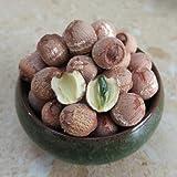 乾燥ハスの実(皮付き、芯付き) 連肉 蓮の実 500g 薬膳 栄養豊 無農薬 無添加