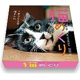 猫めくり 日めくり カレンダー 2016 CK-C16-01
