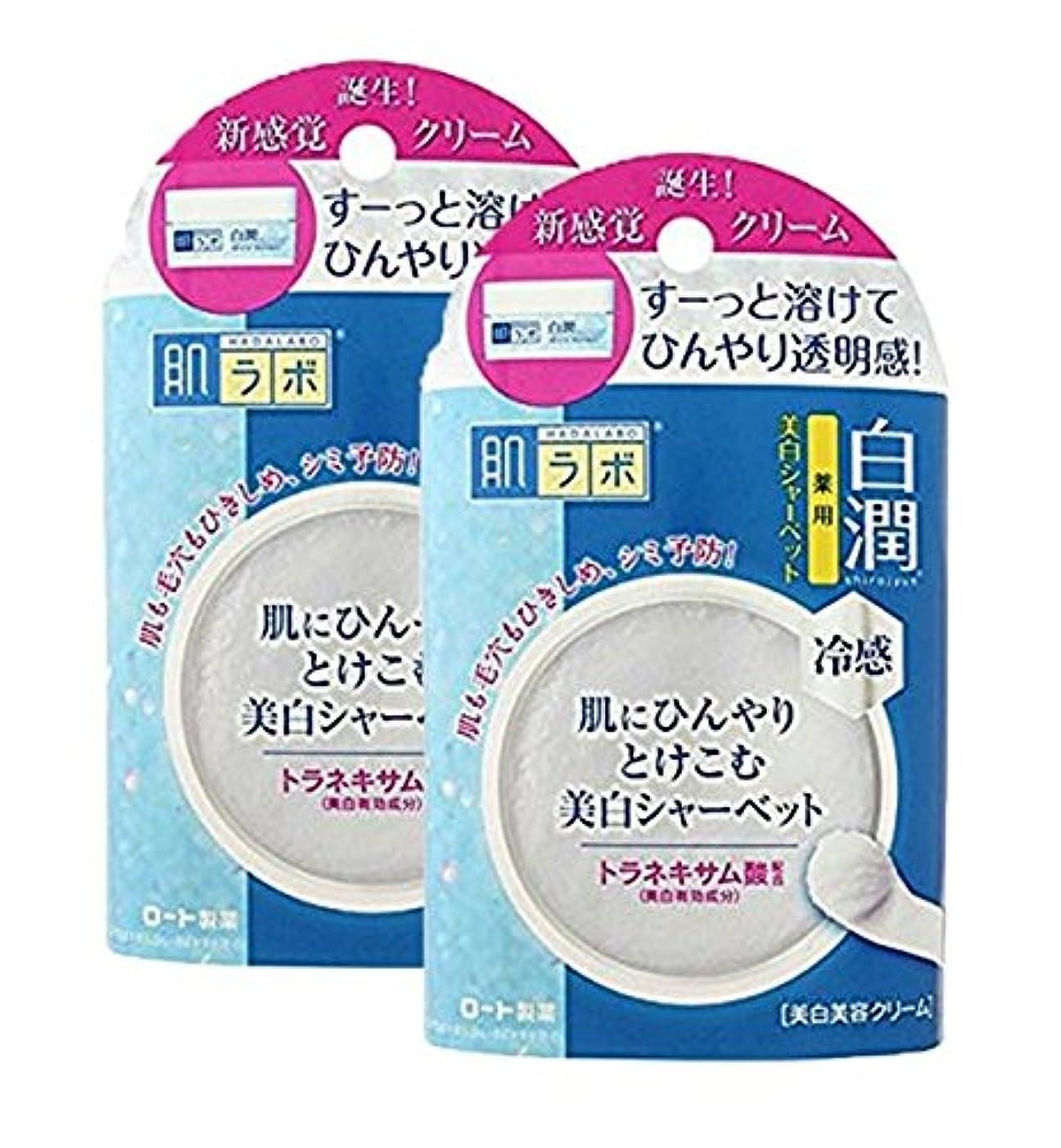 飽和する画家口ひげ肌ラボ 白潤 冷感美白シャーベット30g (医薬部外品)×2