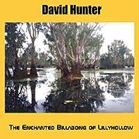 Enchanted Billabong of Lillyhollow