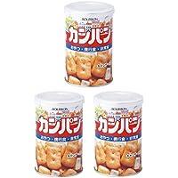 ブルボン 缶入カンパン 100g 1個 ×3セット