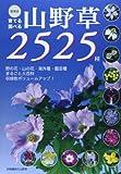 育てる調べる山野草2525種―野の花・山の花・海外種・園芸種まるごと大百科 (別冊趣味の山野草) 画像