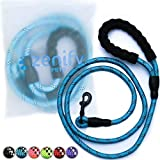 Zenify Pets Dog Lead - Durable Strong Chew Resistant Slip Lead Nylon Rope Padded Handle Mountain Climbing Harness Pet Puppy Training Slipknot Leash for Walking [1/2 inch 1.2cm Thick] (Blue 5ft)