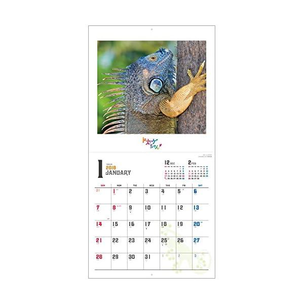トカゲちゃん 2018年 カレンダー 壁掛け ...の紹介画像4