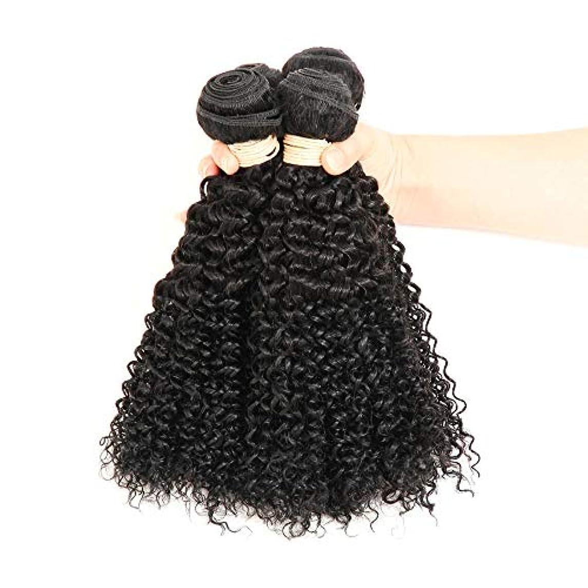 瞑想的入り口稼ぐHOHYLLYA ブラジルのバージン人間の髪の毛の束ブラジルの変態カーリー織り人毛ナチュラルブラック色16-22インチ(100 +/- 5g)/ pc 1バンドルロールプレイングかつら女性の自然なかつら (色 : 黒,...