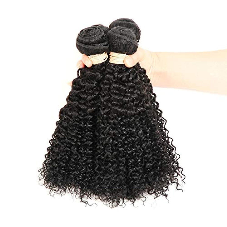 コールドアッパー介入するWASAIO 白人女性ブラックカラー16-22インチ(100 +/- 5グラム)/ PC 1つのバンドルのためのヴィンテージウィッグバンドルブラジル変態カーリーウィッグ (色 : 黒, サイズ : 22 inch)