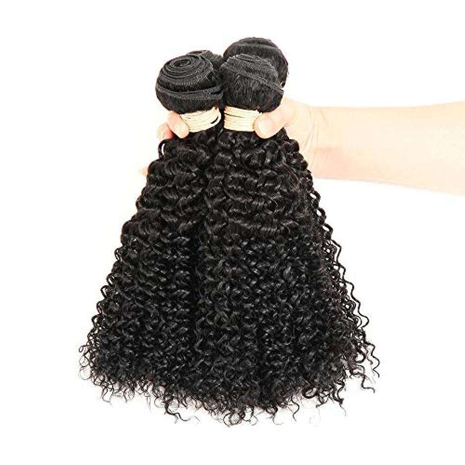 着る失業型HOHYLLYA ブラジルのバージン人間の髪の毛の束ブラジルの変態カーリー織り人毛ナチュラルブラック色16-22インチ(100 +/- 5g)/ pc 1バンドルロールプレイングかつら女性の自然なかつら (色 : 黒,...