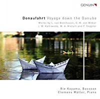 Voyage Down the Danube by Clemens Muller