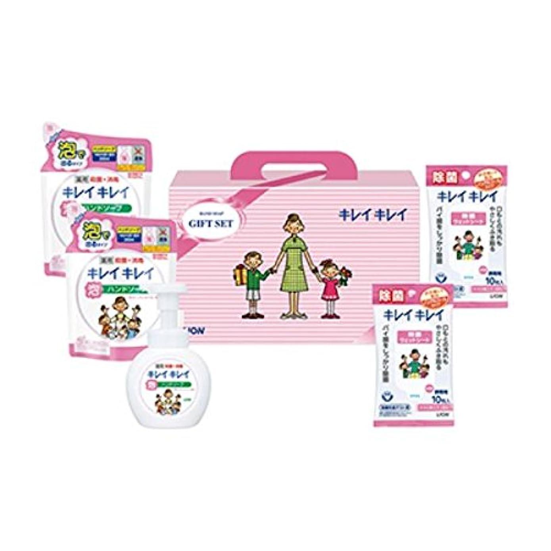 肥満スコア大工ライオン キレイキレイギフトセット【B倉庫】