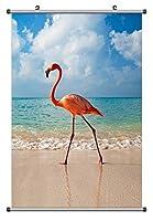 シーサイドでフラミンゴ 動物の写真ポスター掛け軸(70cmx105cm)