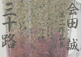 三十路―会田誠第二作品集