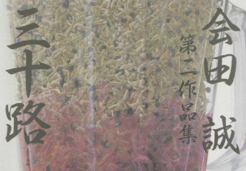 三十路―会田誠第二作品集の詳細を見る