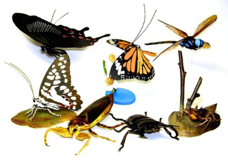 ガシャポン 原色日本昆虫図鑑 III シークレット含む全7種