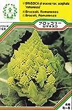 【種子】 ブロッコリー ロマネスコ 三笠園芸