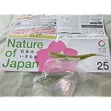 Nature of Japan 日本のいきもの03 単品販売 アユ