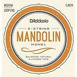 D'Addario ダダリオ マンドリン弦 モネル巻弦 Medium .011-.040 EJM74 【国内正規品】