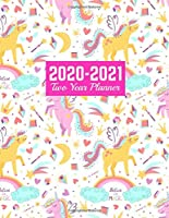 2020-2021 Two Year Planner: Calendar Year Vision Planner (January 2020 - December 2021) - Monthly and Weekly Schedule Organizer and Journal | Art Cover 00023187