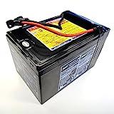 国内正規品 シースクーター 交換バッテリー 〔ZS4C2〕 GTI / VS Supercharged Plus 専用 水中スクーター SEADOO SEASCOOTER