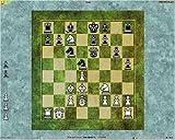 爆発的1480シリーズ チェス 2(新パッケージ版)