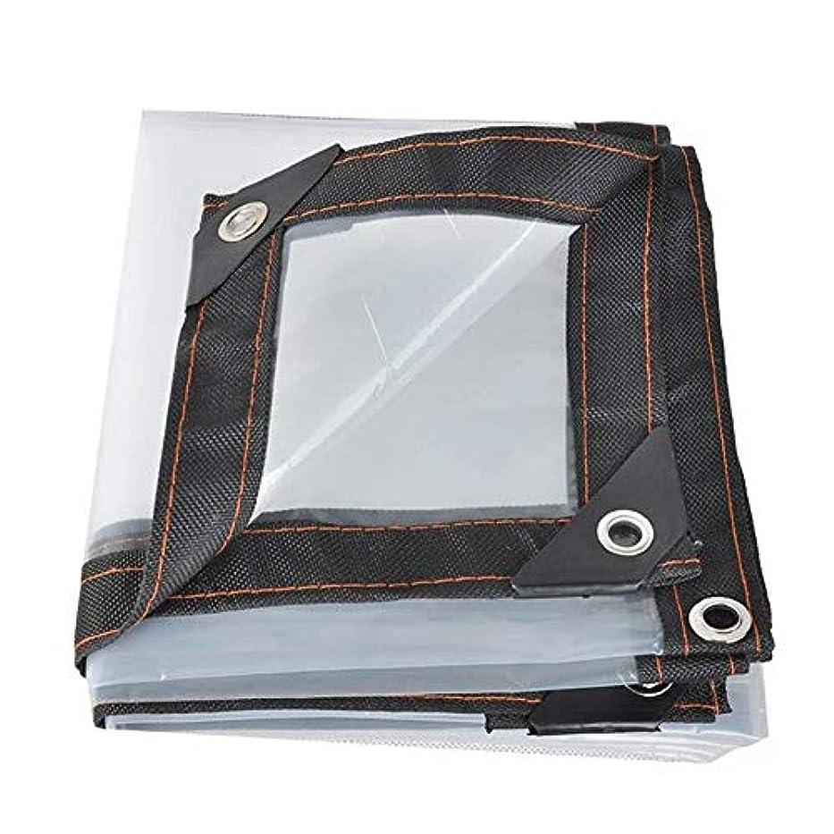教師の日恩赦かすれた防水シートの透明な防水シート、温室のバルコニーの窓のための防水ポリエチレンのPE、明確なプラスチック布 FENGMIMG (色 : クリア, サイズ さいず : 2x3M)