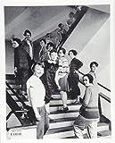 The Bauhaus: 1919-1933: Reform and Avant-garde (Basic Art 2.0) 画像