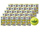 DUNLOP(ダンロップ) プレッシャーライズド テニスボール FORT(フォート)2球入 1箱(30缶/60球)