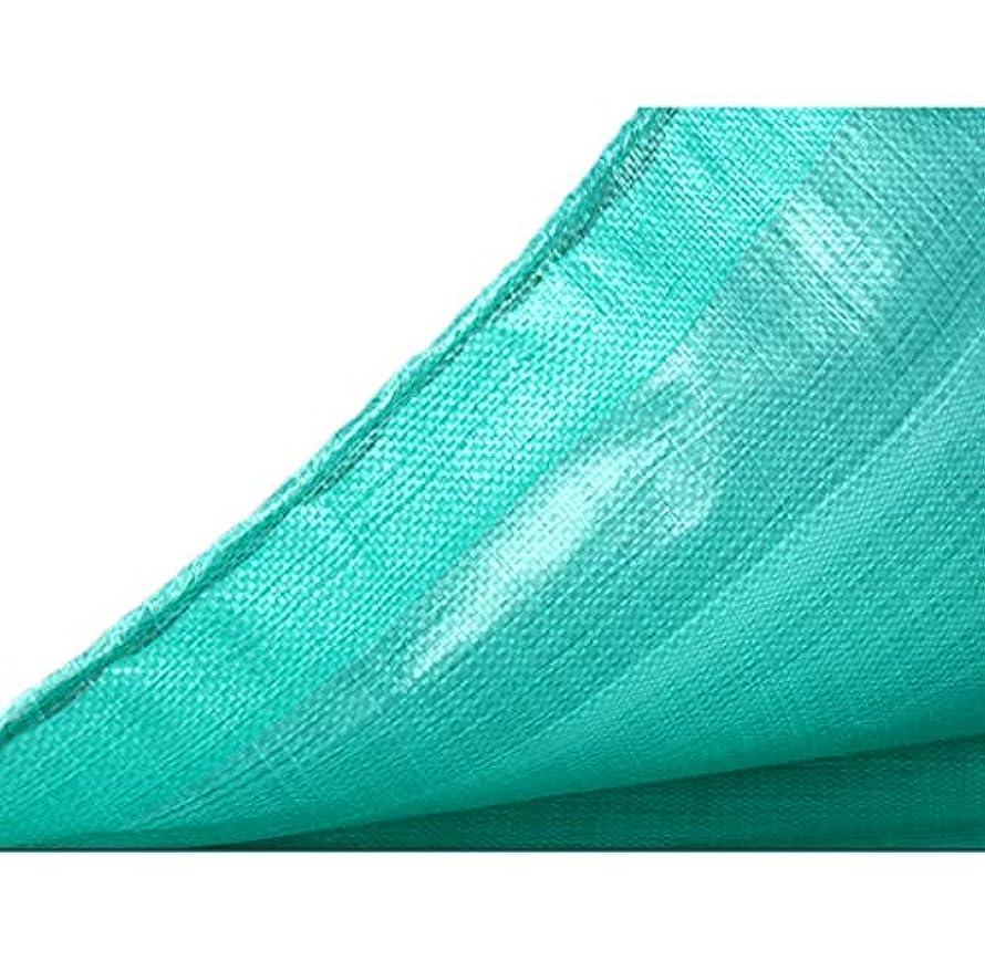 日曜日解釈魔術ターポリン 防水 キャンバス ヘビーデューティ 防雨プラスチック布フィルム 老化防止 日焼け止め 防カビ 絶縁 PE 20サイズ180g /㎡