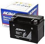 ACDelco [ エーシーデルコ ] シールド型 バイク用バッテリー DTX9-BS