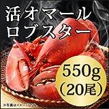 活 オマール ロブスター(550gx20尾)