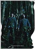 ラーメンズ DVD-BOX