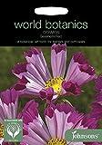 WB 英国ジョンソンズシード Johnsons Seeds world botanics collection Cosmos Seashells Red コスモス・シーシェル・レッド