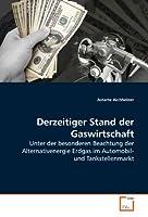 Derzeitiger Stand der Gaswirtschaft: Unter der besonderen Beachtung der Alternativenergie Erdgas im Automobil- und Tankstellenmarkt