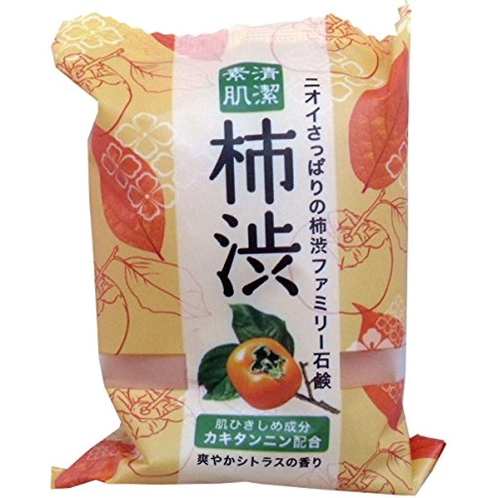 法律コンクリート間違いペリカン石鹸 ファミリー柿渋石鹸(1個)