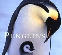 Penguins: Nature's Window