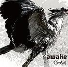awake [TYPE B](在庫あり。)
