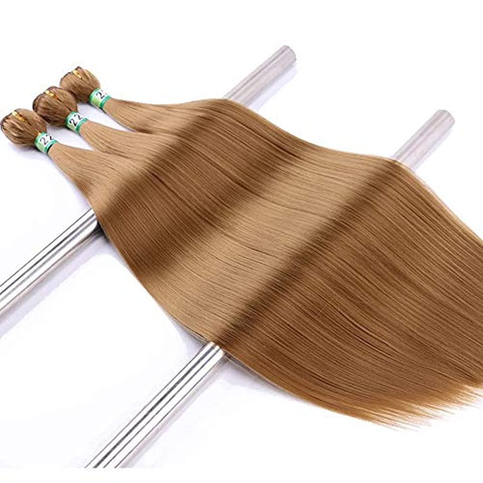 オーブン落ち着かない定常HOHYLLYA ブロンドストレートヘアエクステンションウェーブナチュラルヘア3バンドル合成ヘアレースかつらロールプレイングウィッグロングとショートの女性自然 (色 : Blonde, サイズ : 20inch)