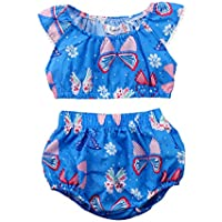 Baby Girl Cute Butterfly Shorts Outfits Floral Tee Tops Brief Shorts Set Playwear Clothes