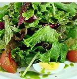 生野菜サラダセット 九州野菜で安心 きゅうり、トマト、ラディッシュなど新鮮野菜4~5種類入