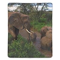 マウスパッド 象の若い母親思いやりのある泥入浴 滑り止め マウス用パット ゲーミング 耐久性 約(18cm X 22cm) マウス パッド