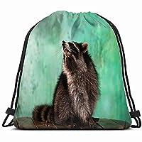 愛らしい飼いならされたアライグマは、屋内の緑の動物野生動物巾着袋バックパックジムダンスバッグリバーシブルフリップスパンコールキラキラバックパックハイキングビーチ旅行バッグ14 x 17インチ