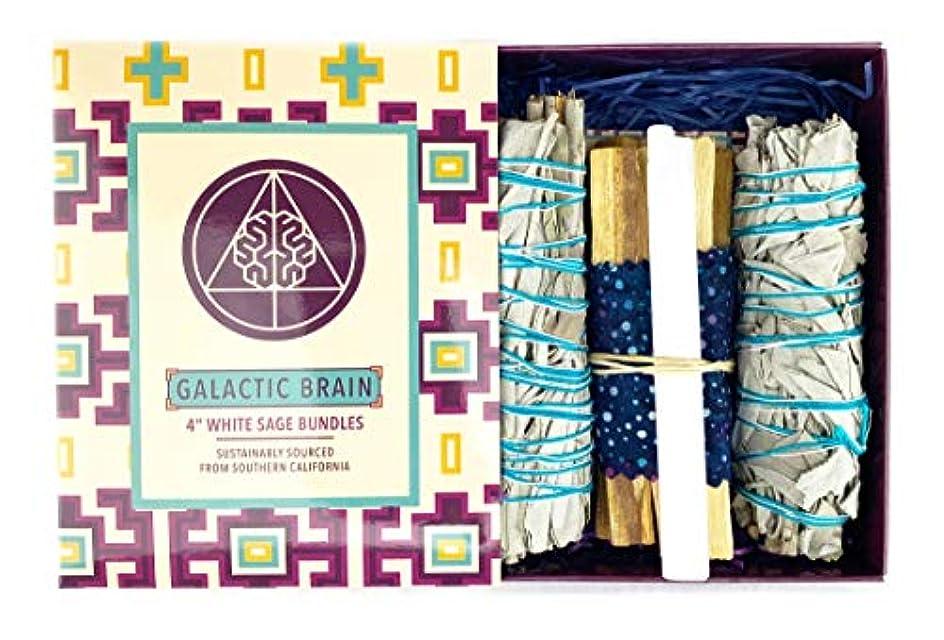 不透明な感謝するたとえGalacticBrain 4インチ カリフォルニアホワイトセージスマッジバンドル/スマッジスティックキット ご自宅をきれいにしましょう。 瞑想/ヨガの練習を強化。 振動を上げましょう。 パロサントスティック 2本 セレナイトクリスタル